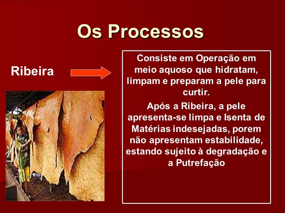 Os Processos Consiste em Operação em meio aquoso que hidratam, limpam e preparam a pele para curtir.