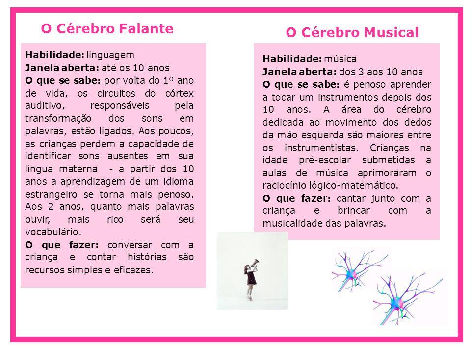 O Cérebro Falante O Cérebro Musical