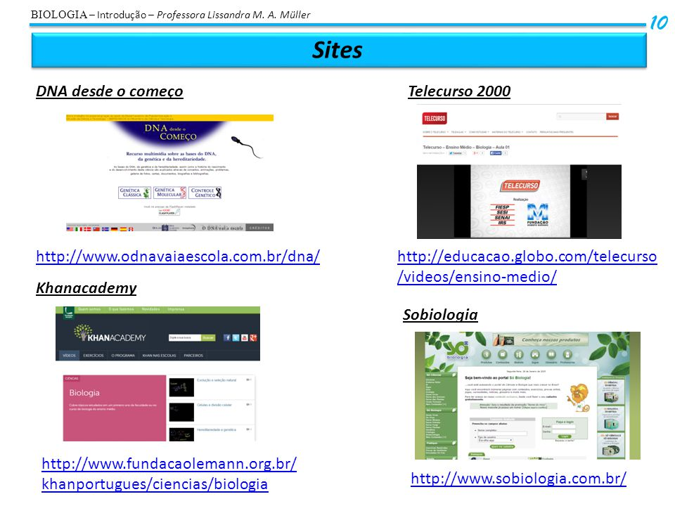Sites 10 DNA desde o começo Telecurso 2000