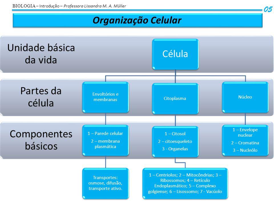 Unidade básica da vida Partes da célula Componentes básicos