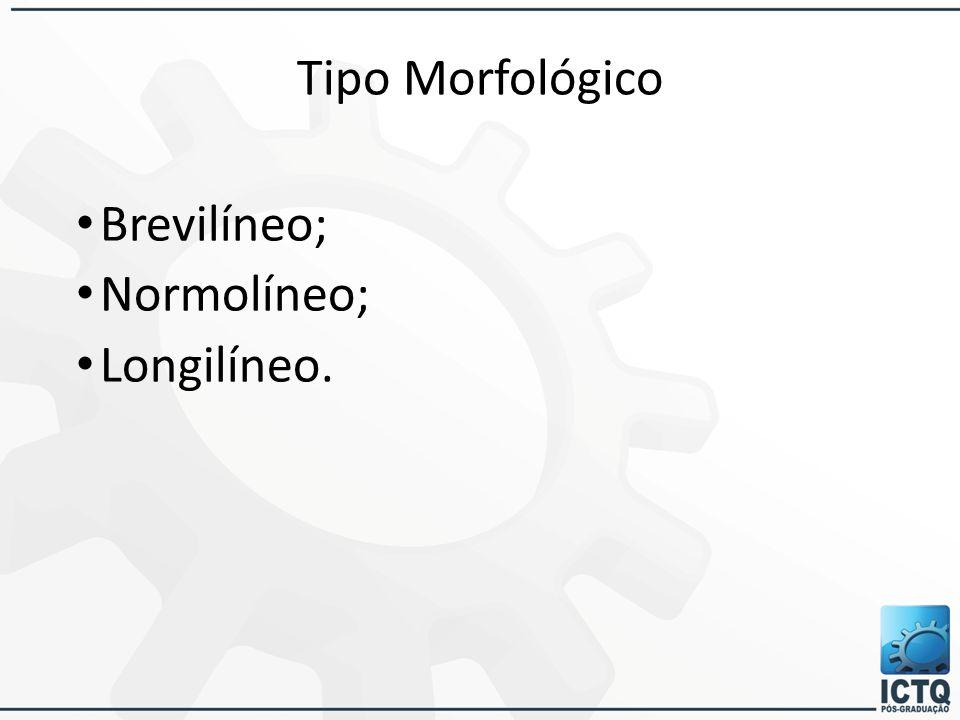Tipo Morfológico Brevilíneo; Normolíneo; Longilíneo.