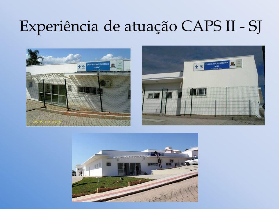 Experiência de atuação CAPS II - SJ