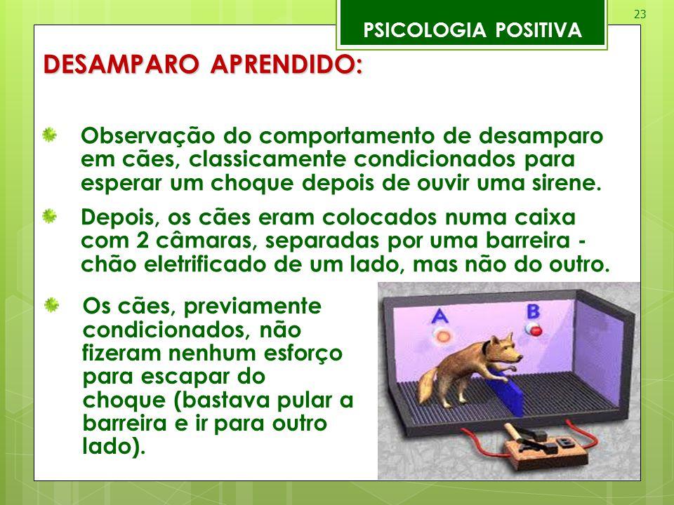 PSICOLOGIA POSITIVA DESAMPARO APRENDIDO: