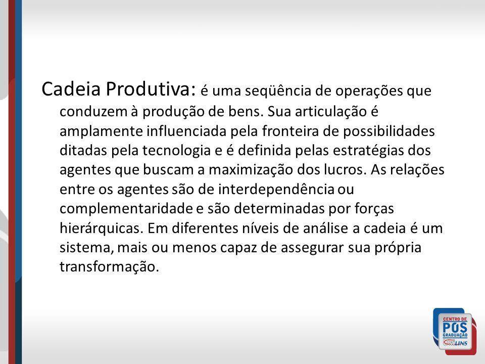 Cadeia Produtiva: é uma seqüência de operações que conduzem à produção de bens.
