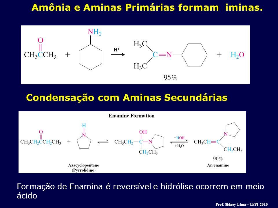 Amônia e Aminas Primárias formam iminas.