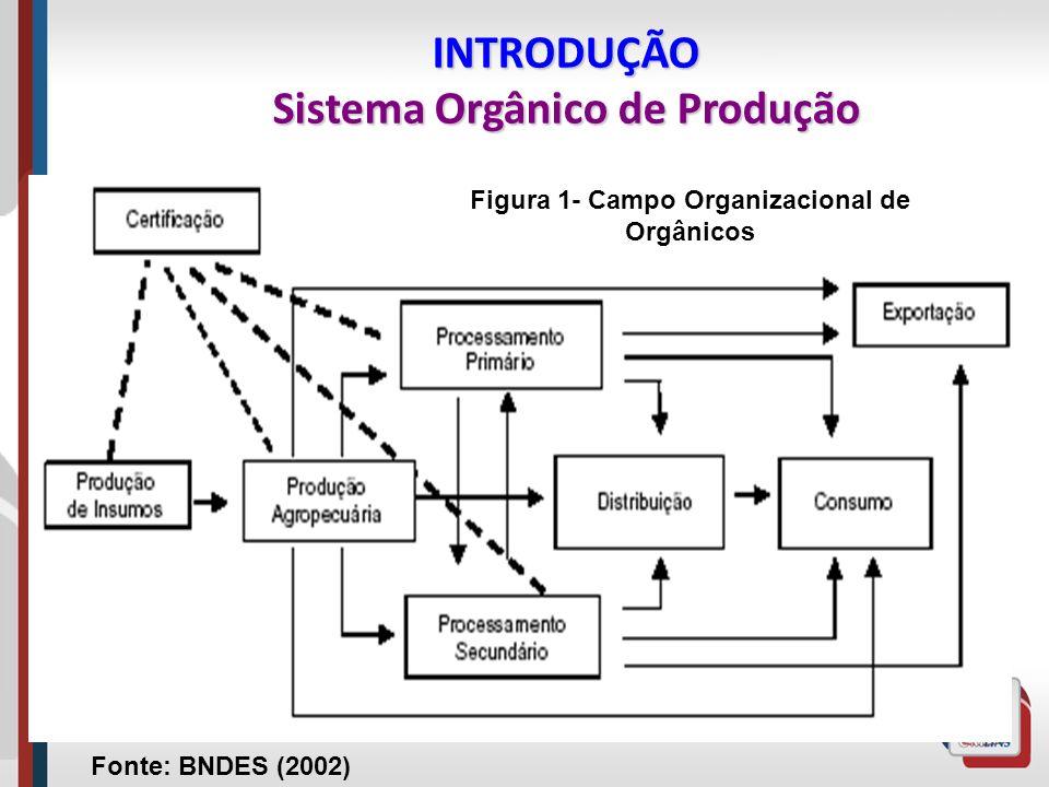 INTRODUÇÃO Sistema Orgânico de Produção
