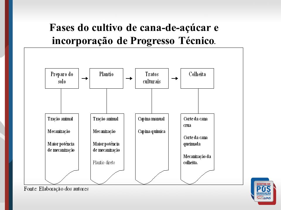 Fases do cultivo de cana-de-açúcar e incorporação de Progresso Técnico.