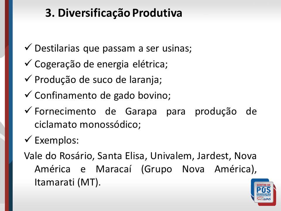 3. Diversificação Produtiva