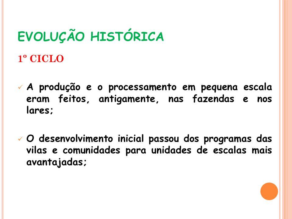 EVOLUÇÃO HISTÓRICA 1º CICLO