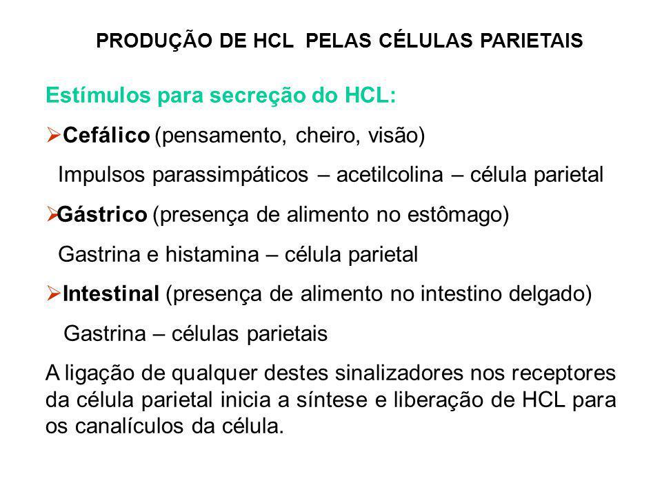 PRODUÇÃO DE HCL PELAS CÉLULAS PARIETAIS