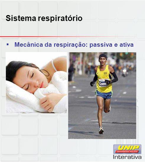 Sistema respiratório Mecânica da respiração: passiva e ativa