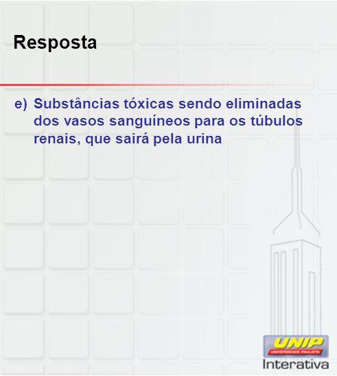 Resposta Substâncias tóxicas sendo eliminadas dos vasos sanguíneos para os túbulos renais, que sairá pela urina.