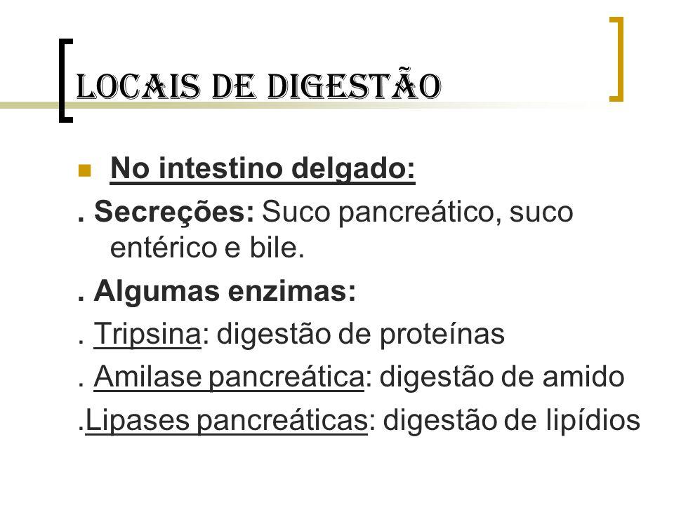 Locais de digestão No intestino delgado:
