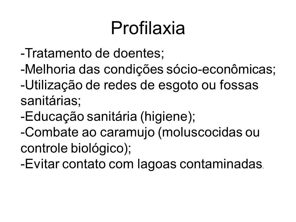 Profilaxia -Tratamento de doentes;