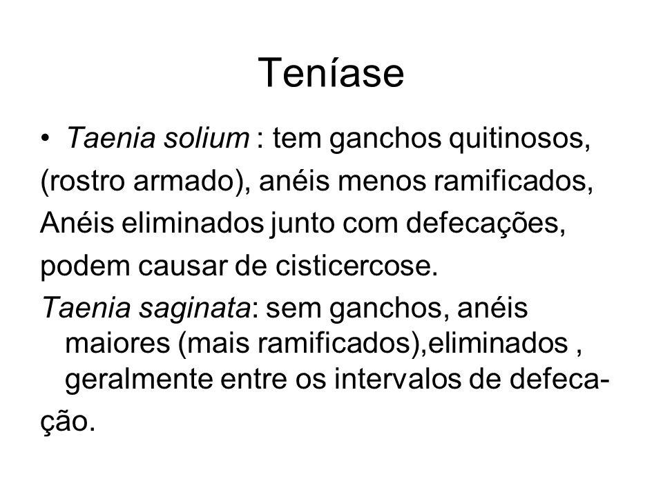 Teníase Taenia solium : tem ganchos quitinosos,