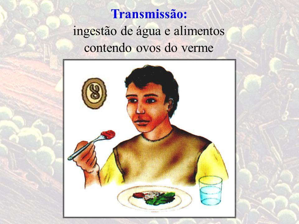 Transmissão: ingestão de água e alimentos contendo ovos do verme