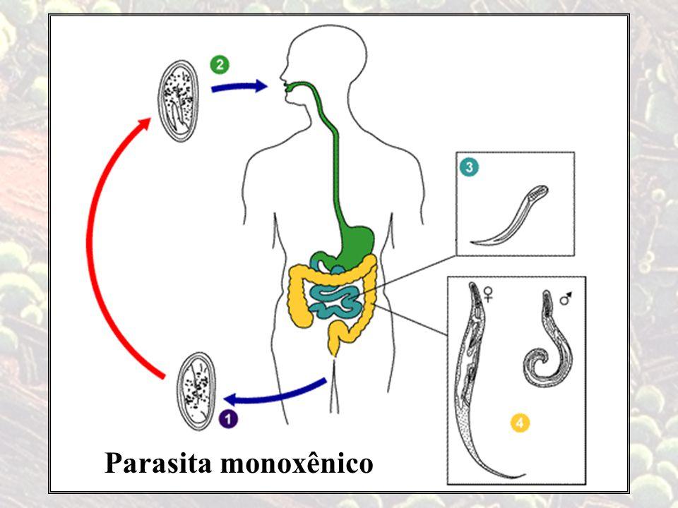 Parasita monoxênico