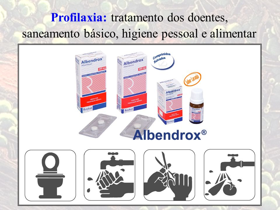 Profilaxia: tratamento dos doentes, saneamento básico, higiene pessoal e alimentar