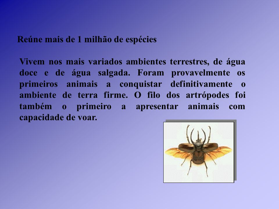 Reúne mais de 1 milhão de espécies