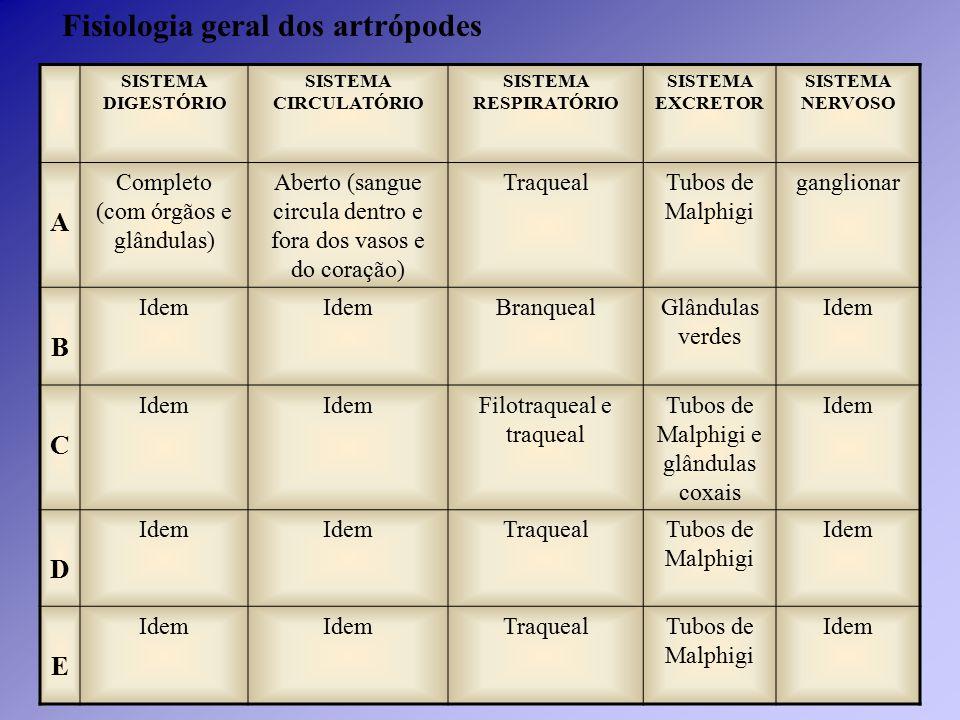 Fisiologia geral dos artrópodes