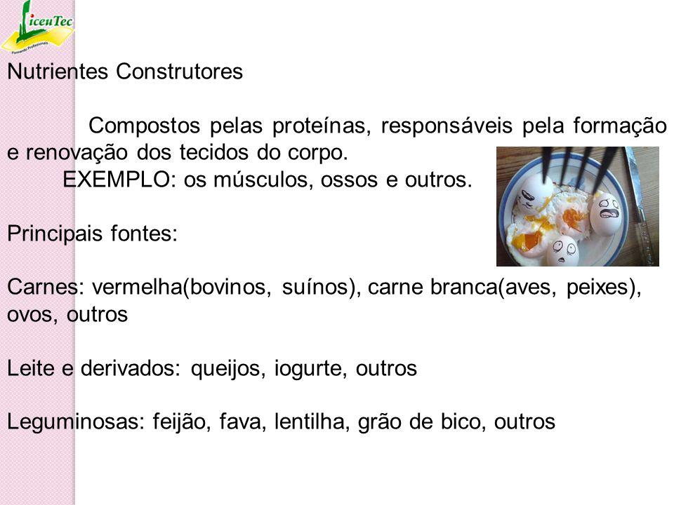 Nutrientes Construtores