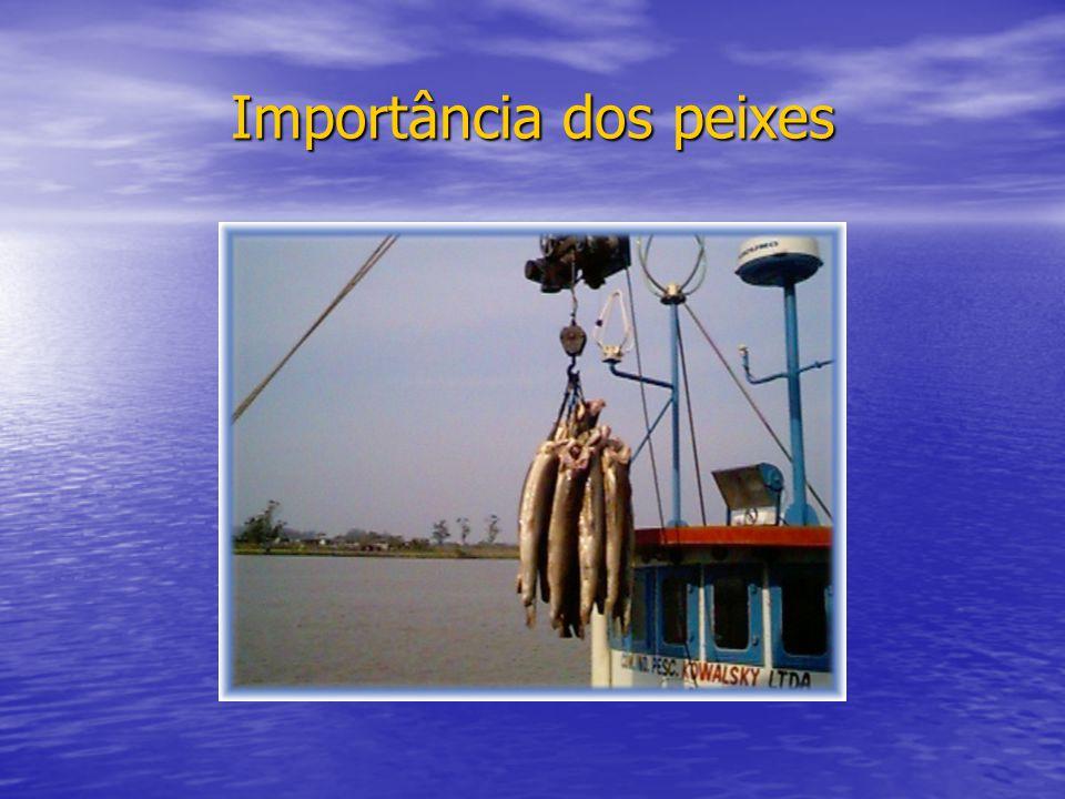 Importância dos peixes