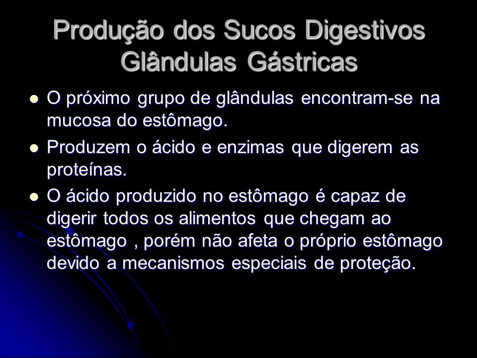 Produção dos Sucos Digestivos Glândulas Gástricas