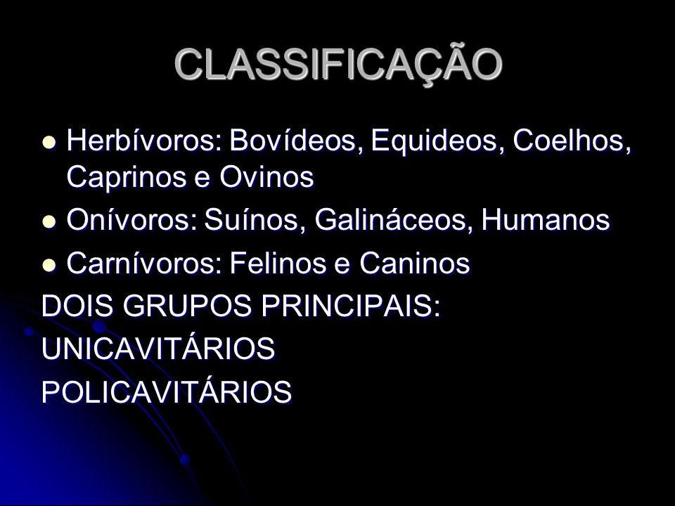 CLASSIFICAÇÃO Herbívoros: Bovídeos, Equideos, Coelhos, Caprinos e Ovinos. Onívoros: Suínos, Galináceos, Humanos.