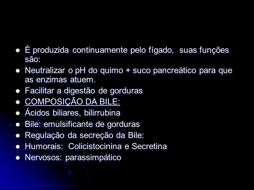 È produzida continuamente pelo fígado, suas funções são: