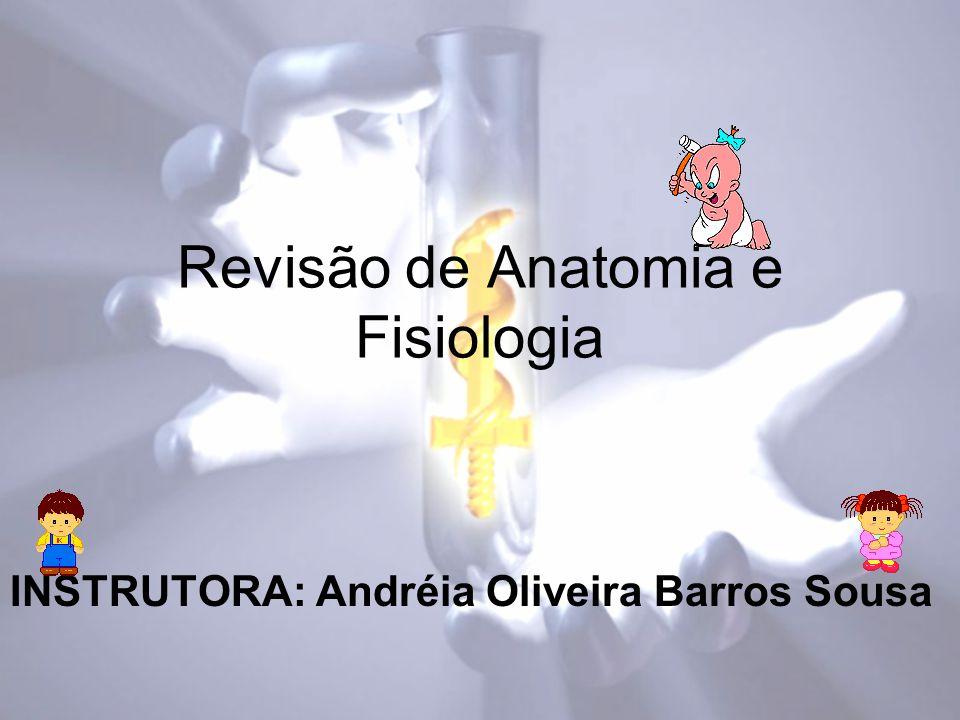 Revisão de Anatomia e Fisiologia