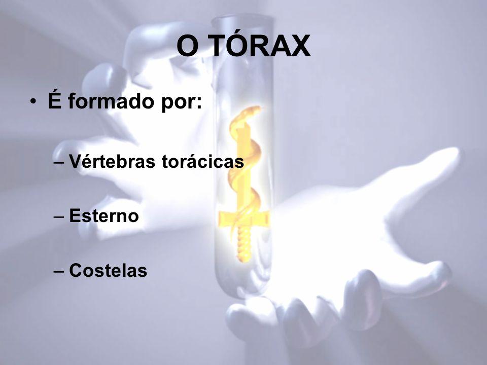 O TÓRAX É formado por: Vértebras torácicas Esterno Costelas