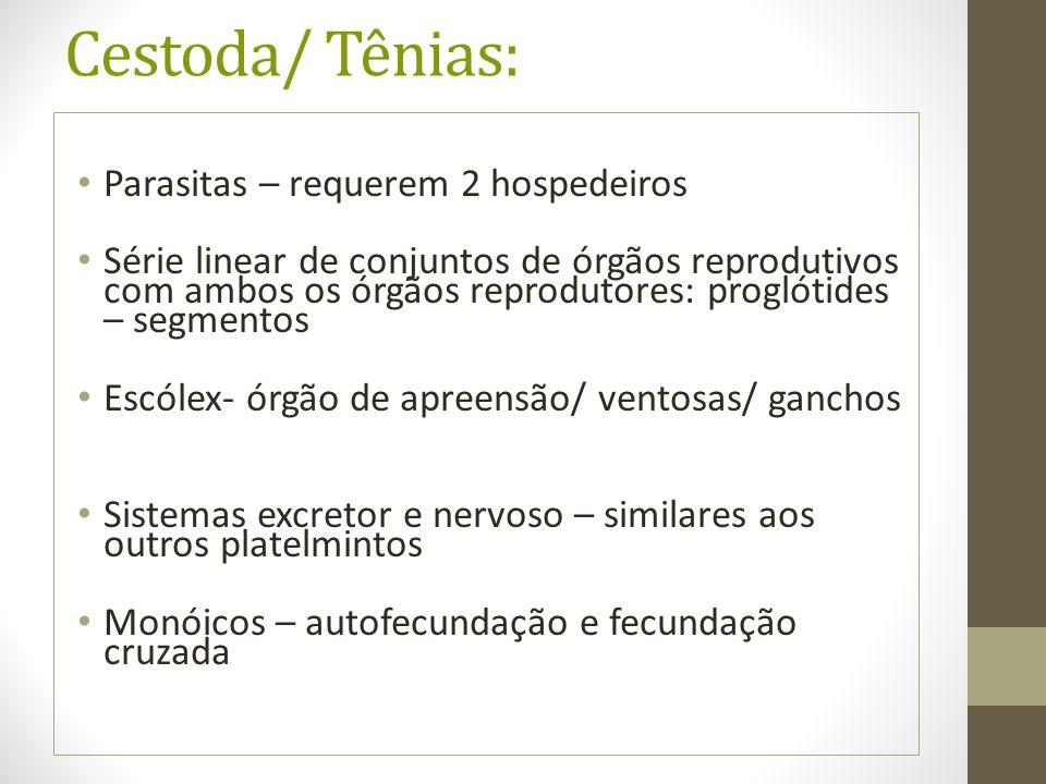 Cestoda/ Tênias: Parasitas – requerem 2 hospedeiros