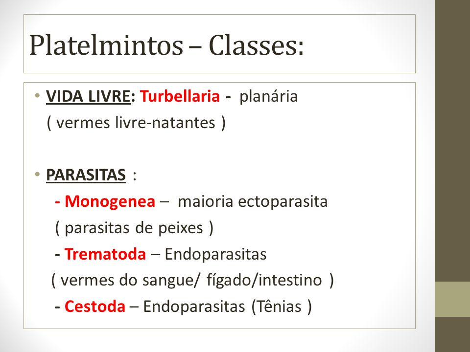 Platelmintos – Classes: