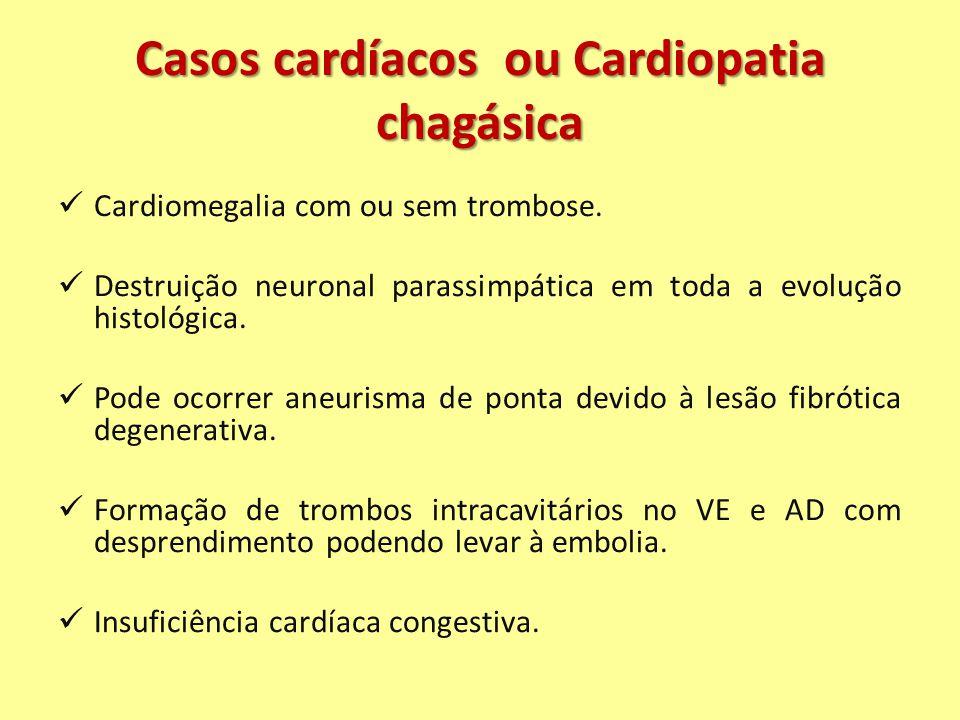 Casos cardíacos ou Cardiopatia chagásica