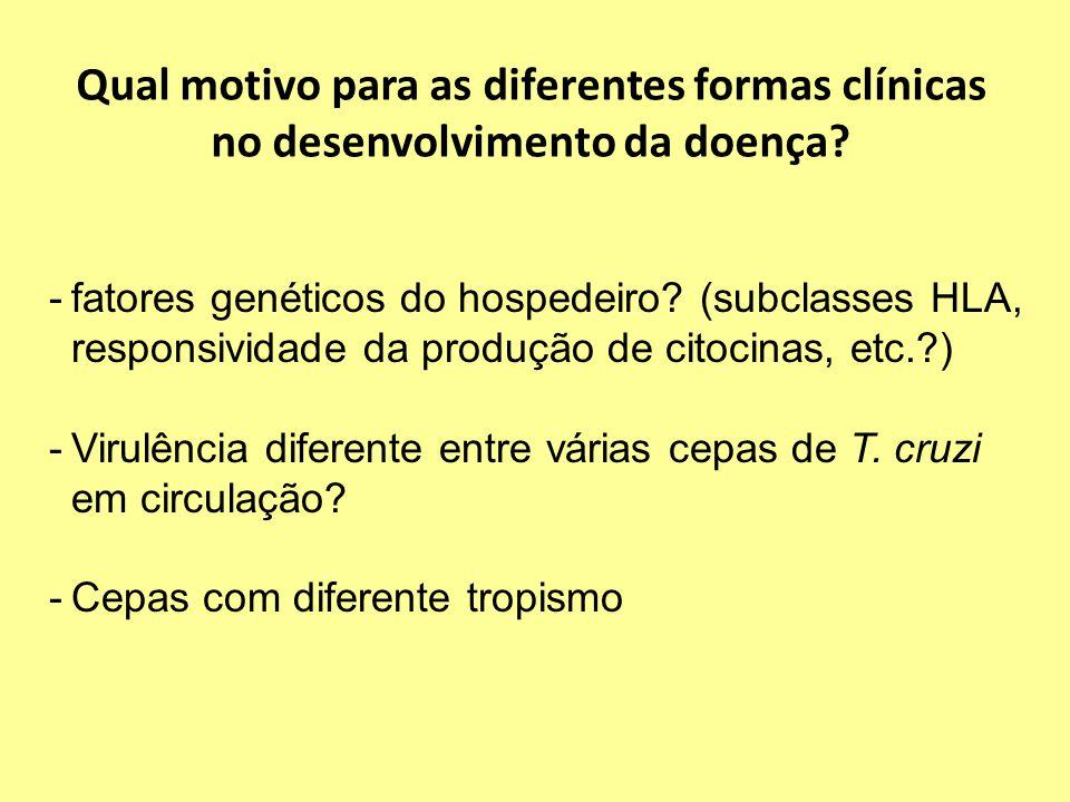 Qual motivo para as diferentes formas clínicas no desenvolvimento da doença