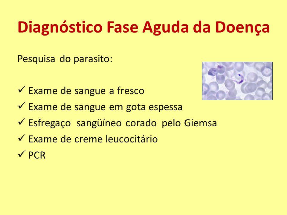 Diagnóstico Fase Aguda da Doença