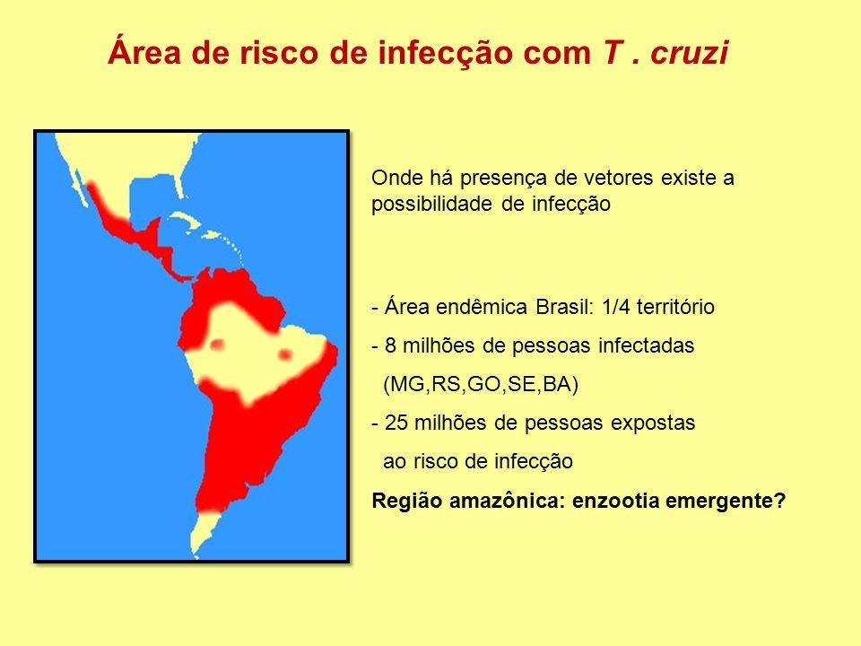 Área de risco de infecção com T . cruzi