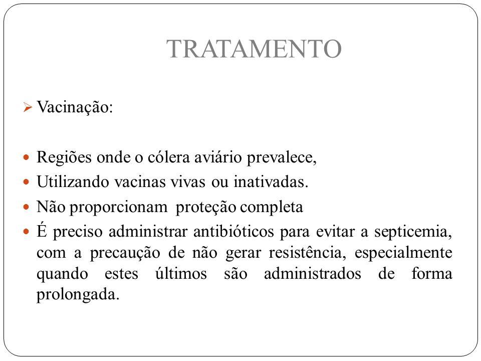 TRATAMENTO Vacinação: Regiões onde o cólera aviário prevalece,