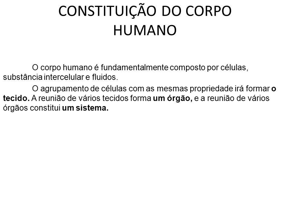 CONSTITUIÇÃO DO CORPO HUMANO