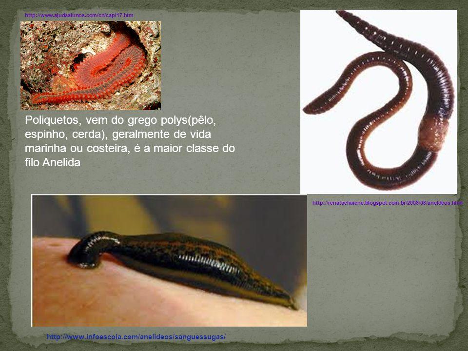 http://www.ajudaalunos.com/cn/capi17.htm