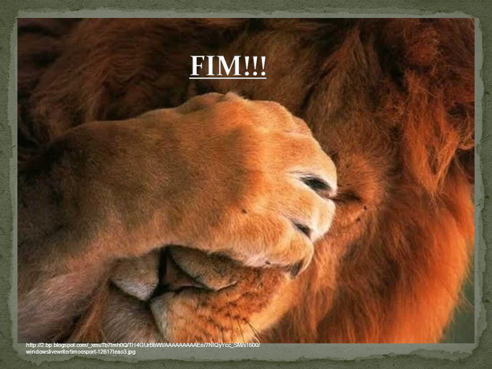 FIM!!.