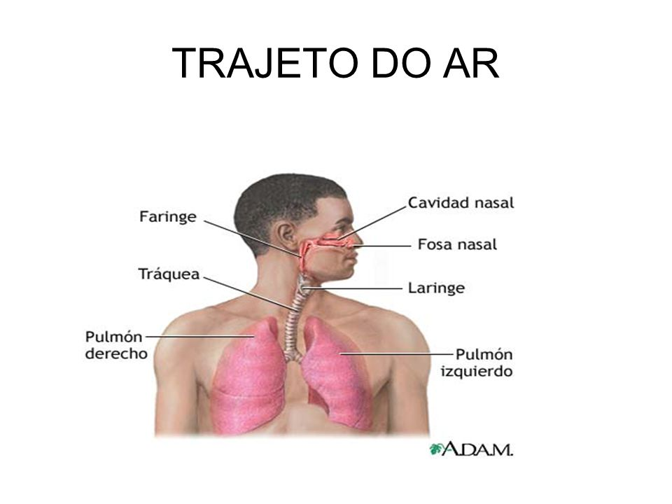 TRAJETO DO AR