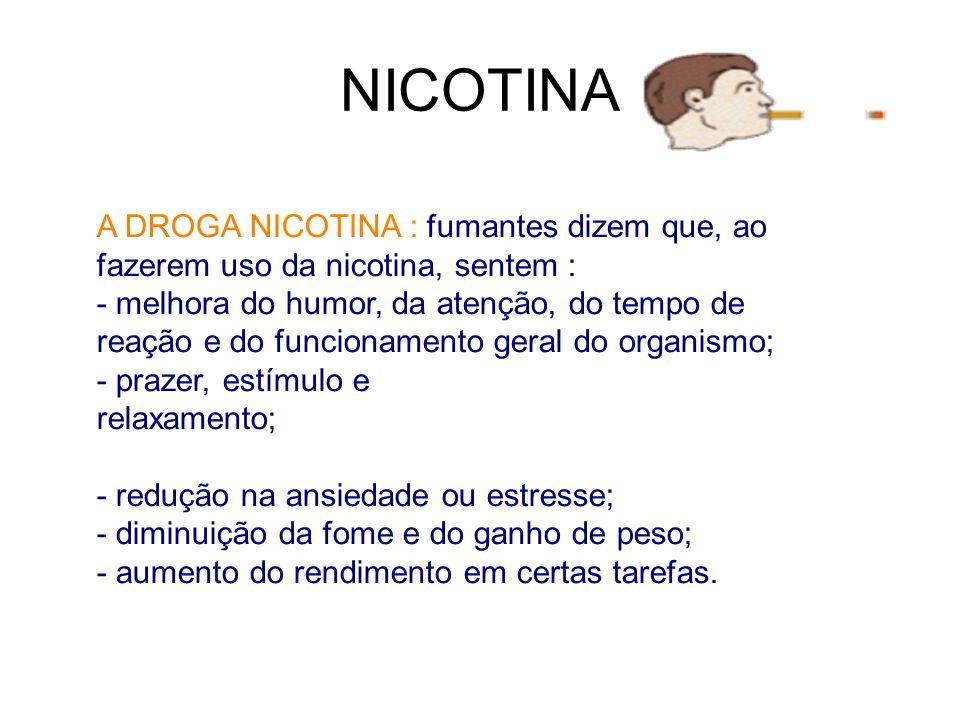 NICOTINA A DROGA NICOTINA : fumantes dizem que, ao fazerem uso da nicotina, sentem :
