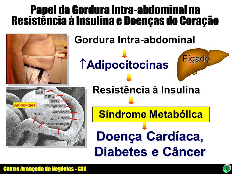 Doença Cardíaca, Diabetes e Câncer