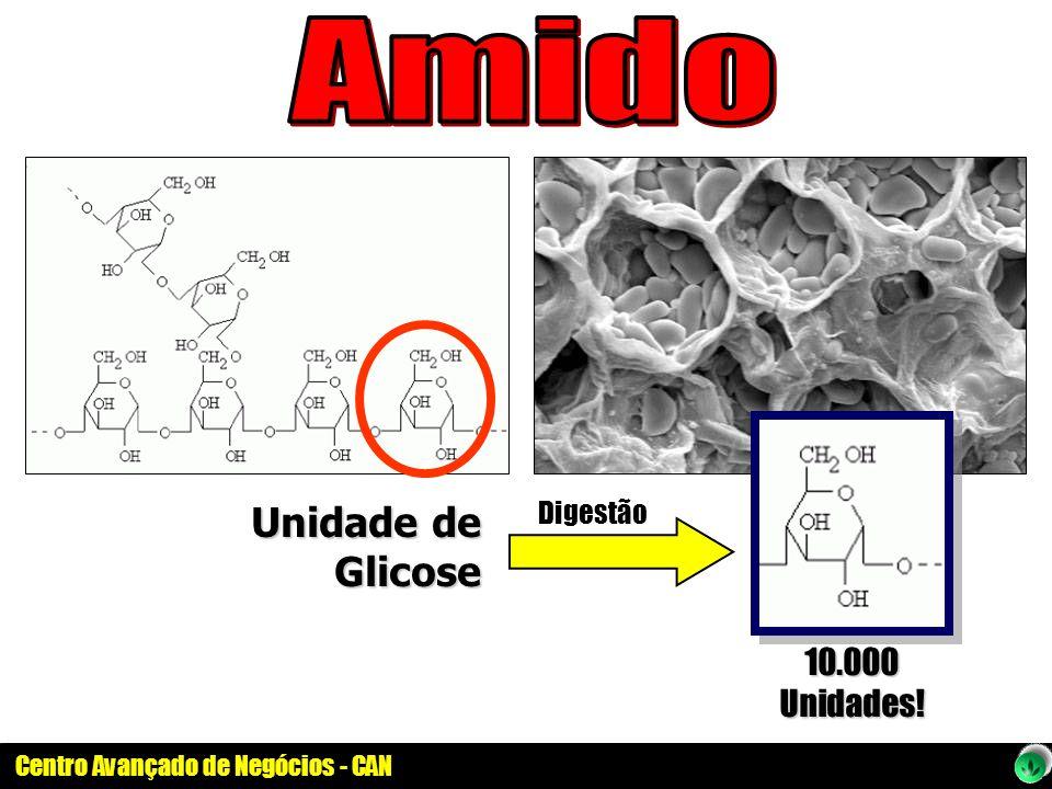 Amido Unidade de Glicose Digestão 10.000 Unidades!