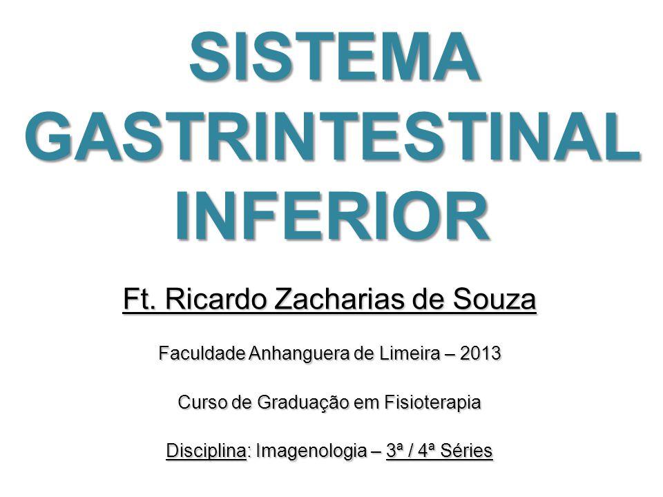 SISTEMA GASTRINTESTINAL INFERIOR