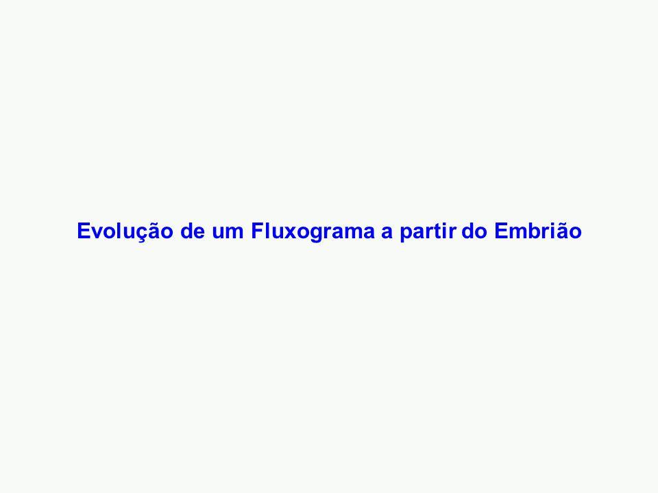 Evolução de um Fluxograma a partir do Embrião