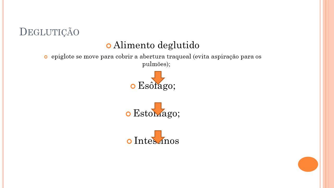 Deglutição Alimento deglutido Esôfago; Estomago; Intestinos