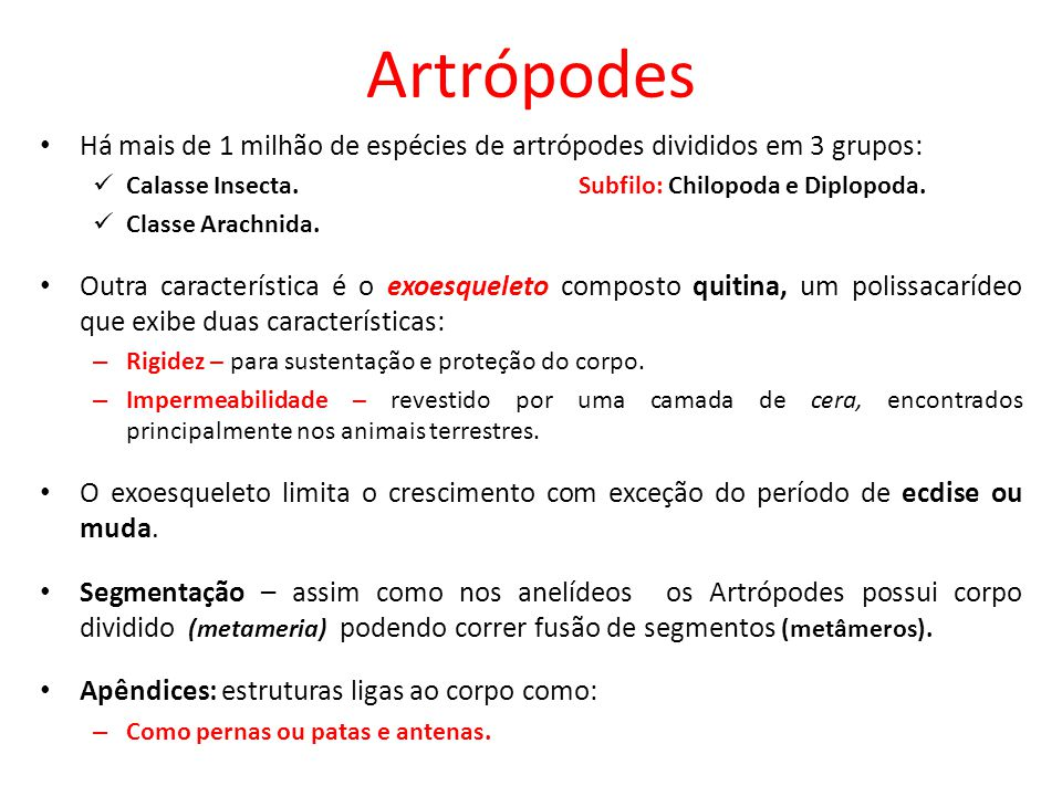 Artrópodes Há mais de 1 milhão de espécies de artrópodes divididos em 3 grupos: