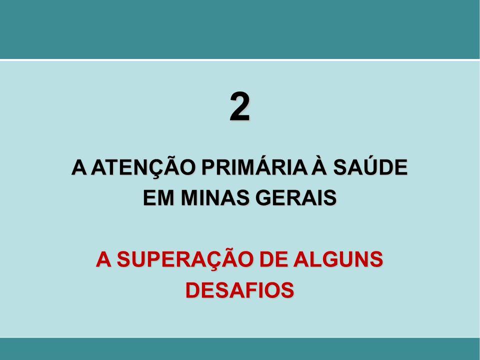 2 A ATENÇÃO PRIMÁRIA À SAÚDE EM MINAS GERAIS